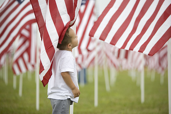 Healing Field Flags of Remembrance