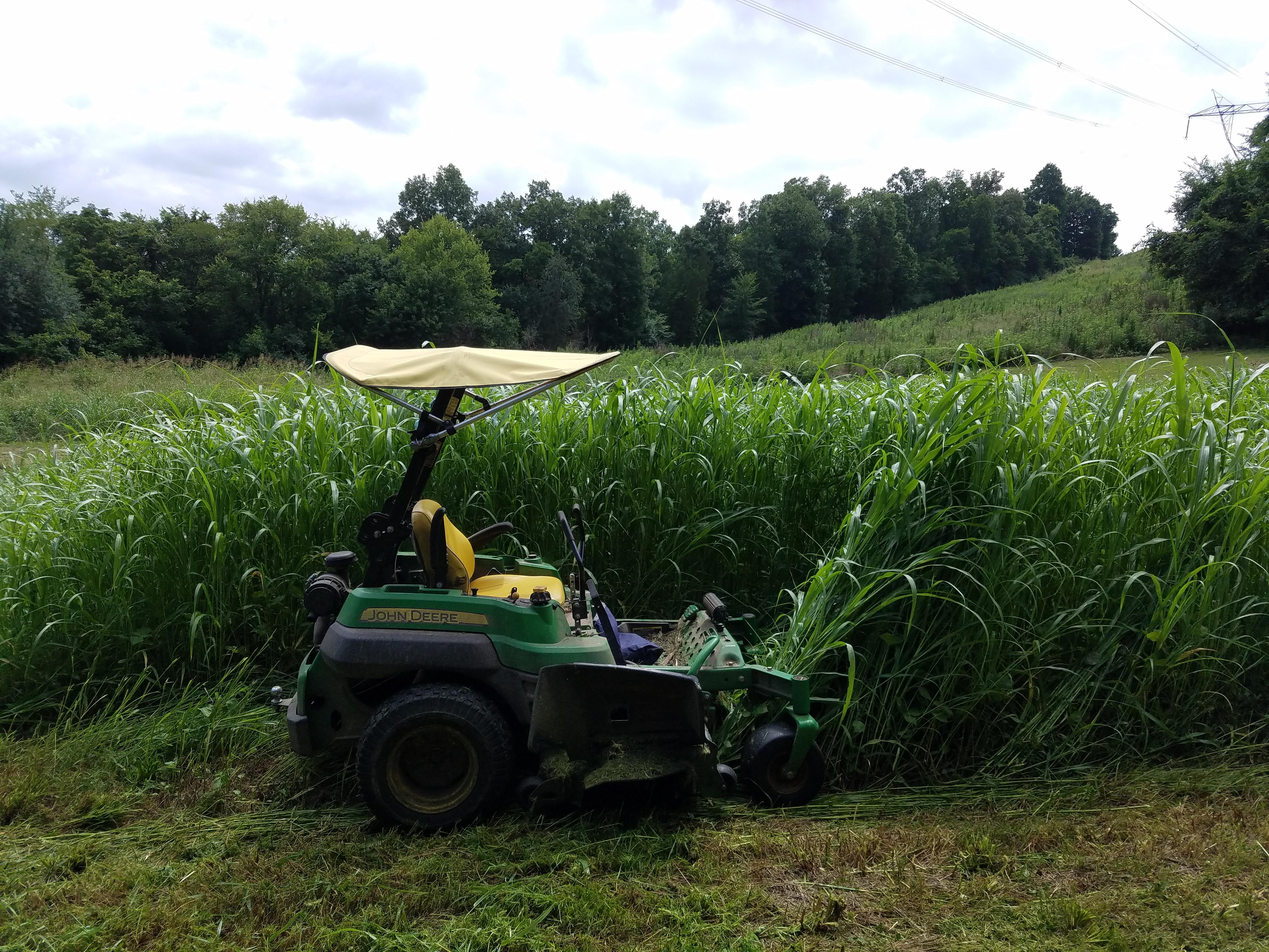 Farm Grass Cutting 2018 (2).jpg